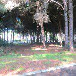parco fronte villa